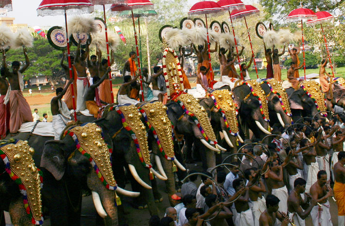 south india with backwaters and festival extension
